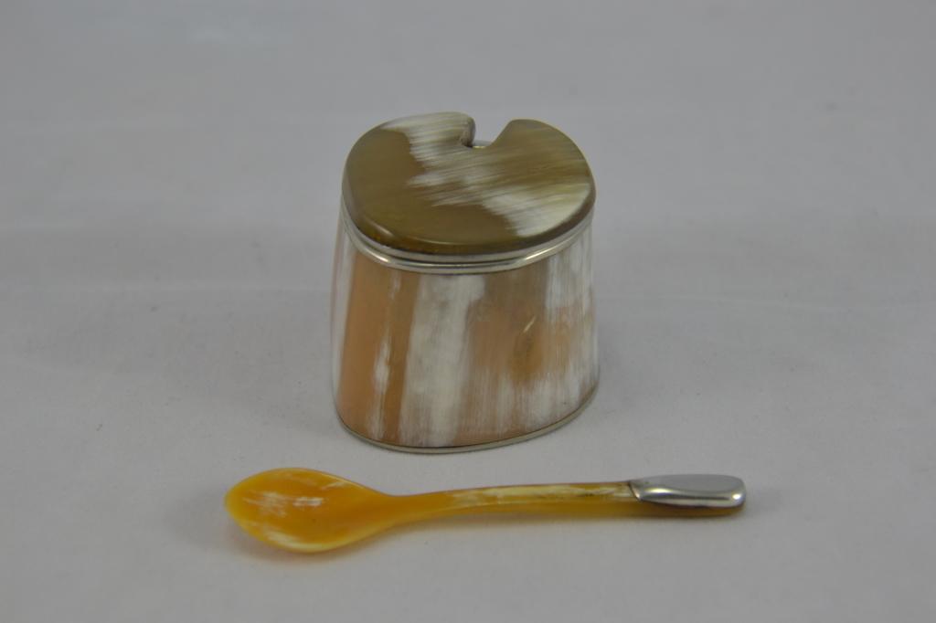 Salt Spoon Image